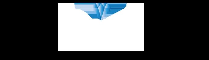 blitz logo